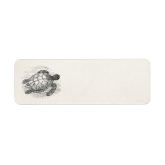 Tortugas marinas personalizadas de la tortuga de etiqueta de remite