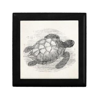 Tortugas marinas personalizadas de la tortuga de joyero cuadrado pequeño