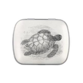 Tortugas marinas personalizadas de la tortuga de latas de dulces