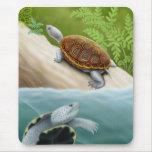 Tortugas Mousepad de la tortuga acuática de