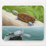 Tortugas Mousepad de la tortuga acuática de Diamon