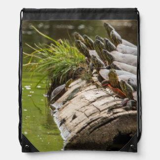 Tortugas pintadas que se asolean en una charca mochilas