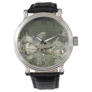 Tortugas Relojes De Pulsera