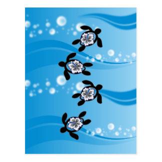 tortugas y hibisco tarjetas postales
