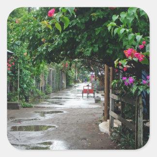 Tortuguero después de la lluvia pegatina cuadrada