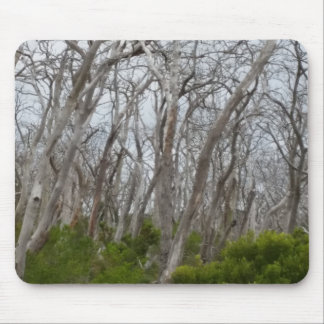 Tortured Trees Mouse Pad