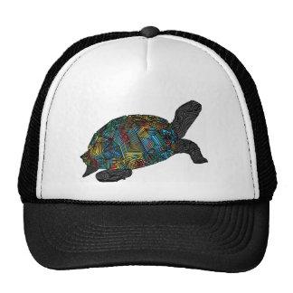 Tortus Hat