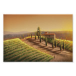 Toscana Posters