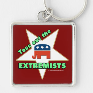 Toss Out the Republican EXTREMISTS! Keychain