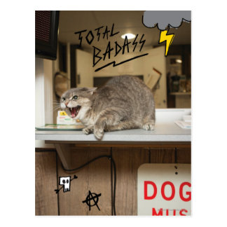 Total Badass Cat Postcard