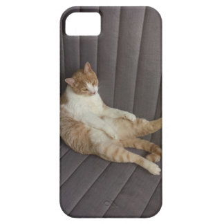 Totally relaxed iPhone SE/5/5s case