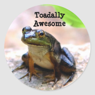Totally (Toadally) Awesome Classic Round Sticker