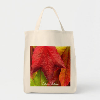 Tote Bag-Color of Autumn