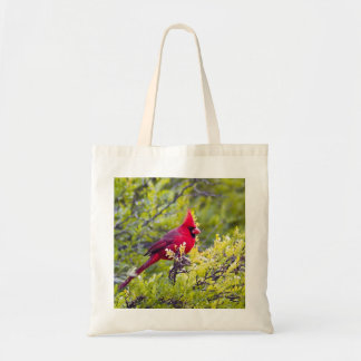Tote cardinal bolsa tela barata