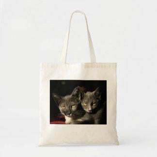Tote gris del presupuesto de la foto de los gatos