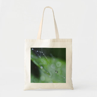 ToteBag: Moment in the Forest Tote Bag
