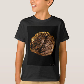 Totem Circle_David Hart T-Shirt