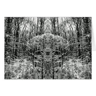 Totem Trees Snow Woods 5x7 Art Photo Blank Inside Card