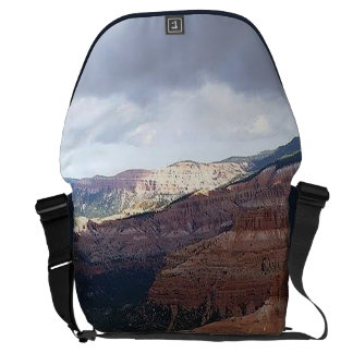 Totes and Bags Courier Bag