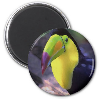 Toucan 1 magnet