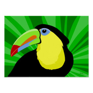 Toucan Art Posters and Prints