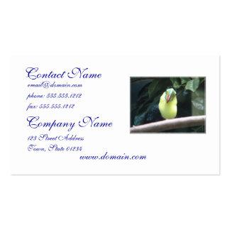 Toucan Bird Business Cards