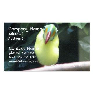 Toucan Bird Business Card Templates
