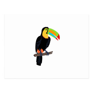 TOUCAN BIRD POSTCARD