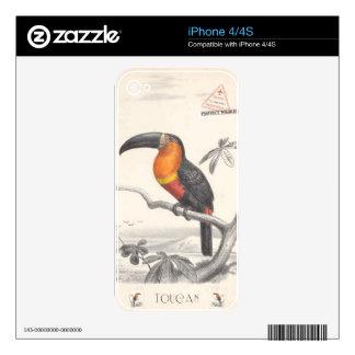 Toucan Bird Responsible Travel Art Decals For iPhone 4S
