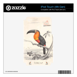 Toucan Bird Responsible Travel Art iPod Touch 4G Decal