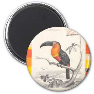 Toucan Bird Responsible Travel Art Magnet