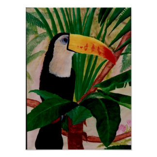 Toucan Bird South American Jungle Bird Art Poster