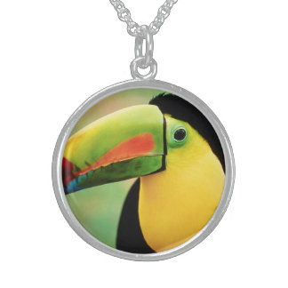 Toucan Bird Wild Nature Colorful Photography Jewelry