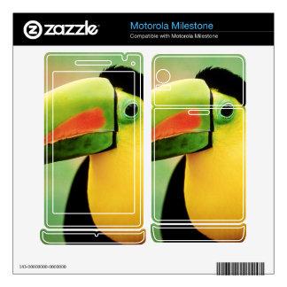 Toucan Bird Wild Nature Colorful Photography Motorola Milestone Decals