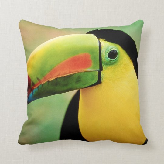 Colorful Bird Throw Pillows : Toucan Bird Wild Nature Colorful Photography Throw Pillow Zazzle