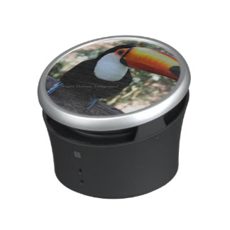 Toucan Bumpster Speaker