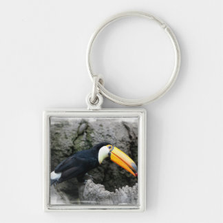 Toucan con la baya llavero personalizado