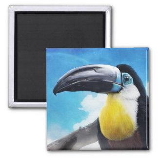 Toucan en la pintura tropical digital del pájaro d imán cuadrado