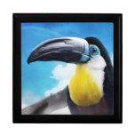 Toucan en la pintura tropical digital del pájaro d caja de joyas