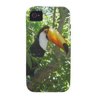 Toucan iPhone 4/4S Funda