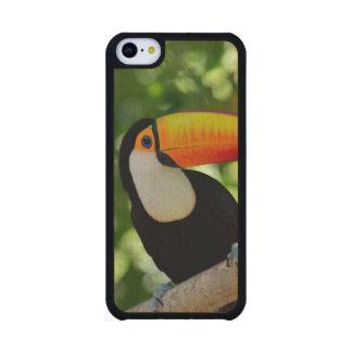 Toucan Funda De iPhone 5C Slim Arce