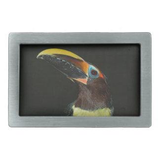 Toucan gift belt buckle
