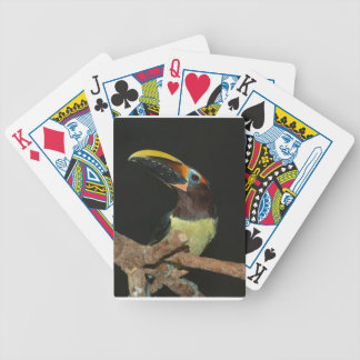 Toucan gift bicycle playing cards