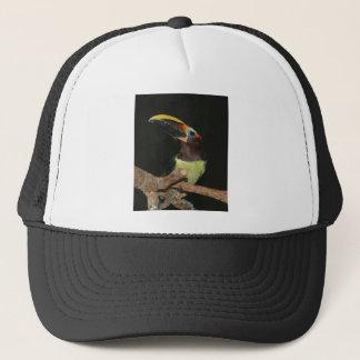 Toucan gift trucker hat