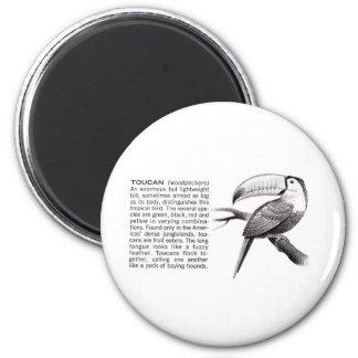 toucan imán redondo 5 cm