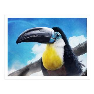 Toucan in Misty Air digital tropical bird painting Postcard