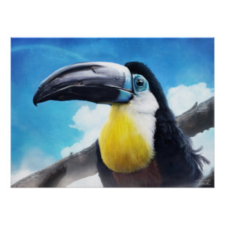 Toucan  in misty air poster