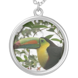 Toucan in the Jungle Necklaces