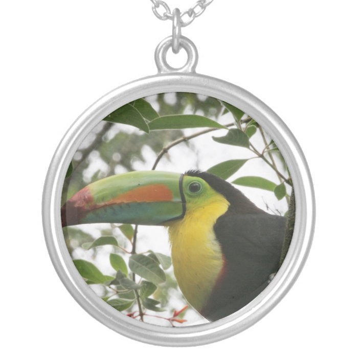 Toucan in the Jungle Silver Plated Necklace