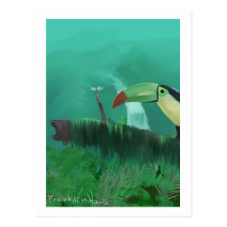 Toucan in the Rainforest Postcard